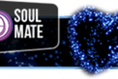 Soul Mate-Anima Gemella ThetaHealing