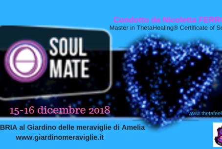 Soul Mate-Anima Gemella ThetaHealing®